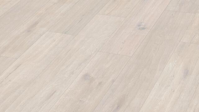 Meister Design. pro DD200  Arctic white oak 6995